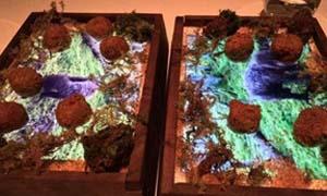 美国米其林餐厅用iPad当餐盘 一道菜上千元你吃得起吗