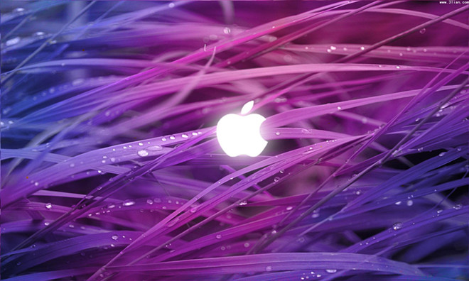 苹果股价创出历史新高       让巴菲特赚得盆满钵满