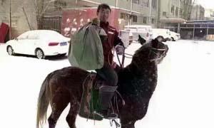 快递员骑马送包裹 踏雪而来马上到南方朋友表示惊呆了