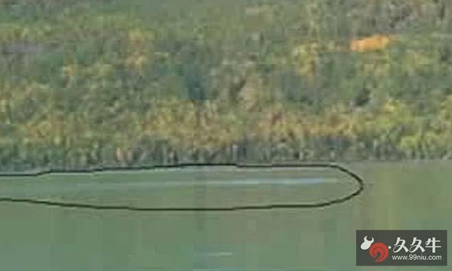新疆喀纳斯湖惊现巨型食肉水怪