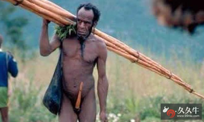 非洲象人族巨阴族超长生殖器