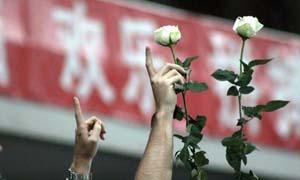 17岁被杀女球迷 疑遭性侵上港球员悲痛哀悼令人动容
